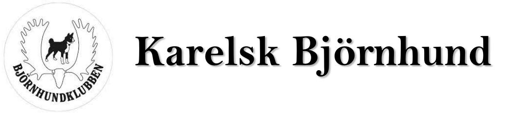 Svenska Björnhundklubben